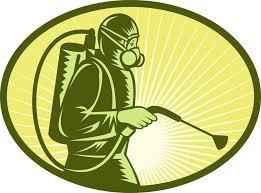 مكافحة حشرات بمكه