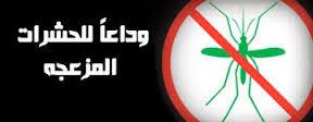 مكافحة الحشرات في مكة