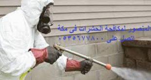 مكافحة الحشرات فى مكة